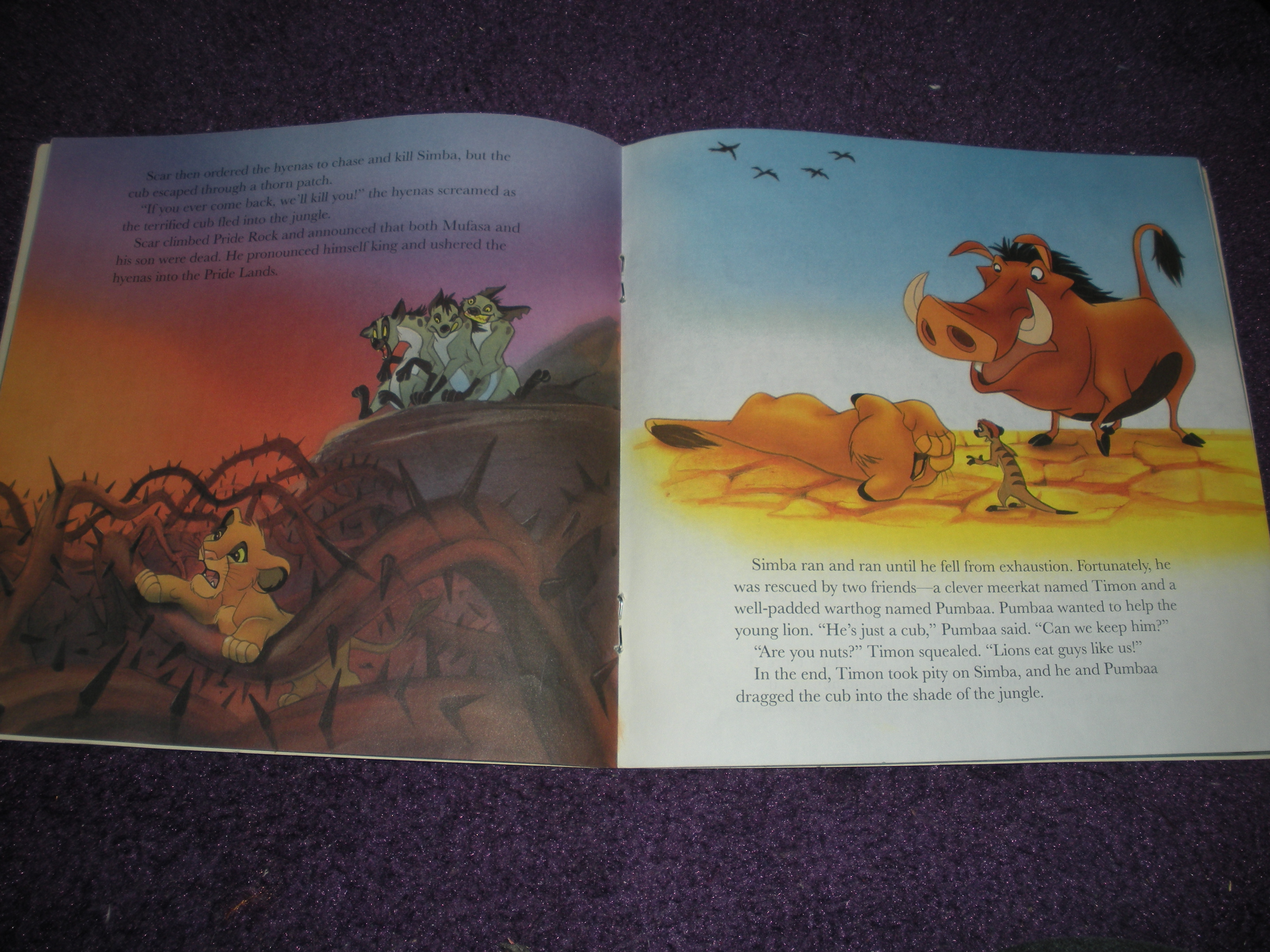 an evaluation of the novel the lion king The lion king (1994) plot showing all 7 items jump to: summaries (6) synopsis (1)  the lion king takes place in the pride lands of africa, where a lion rules over the other animals as.