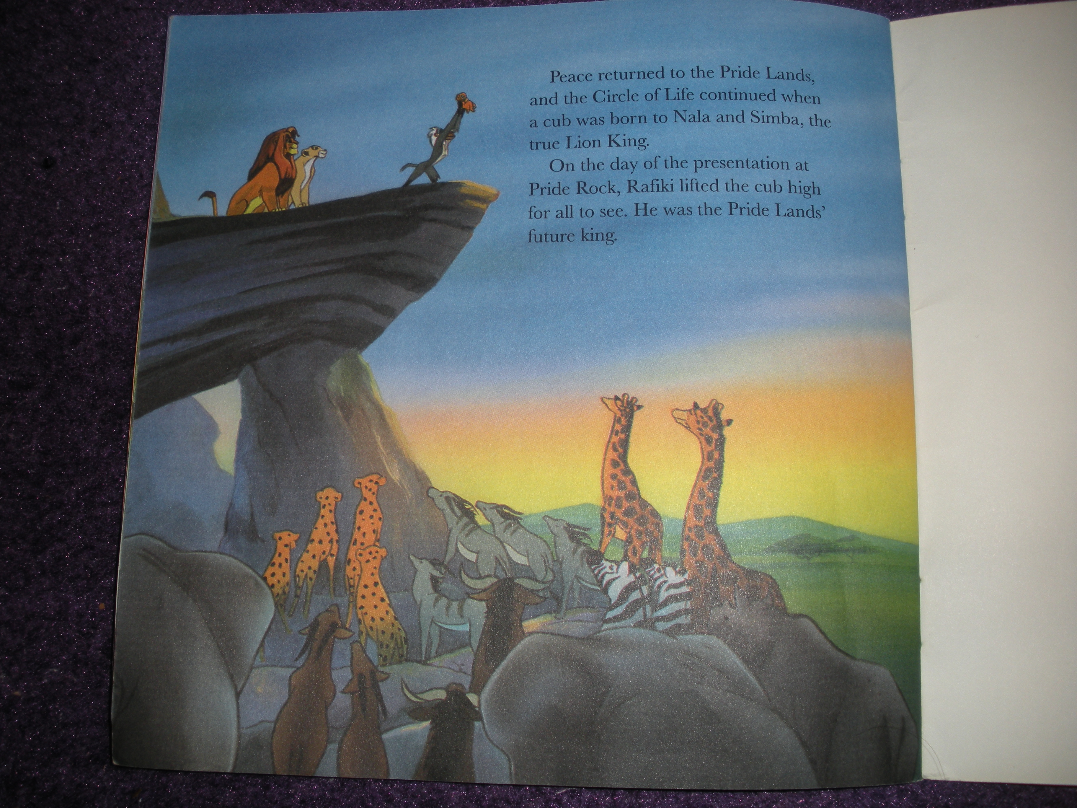 Childrens Books  The Lion King  Walts Writers